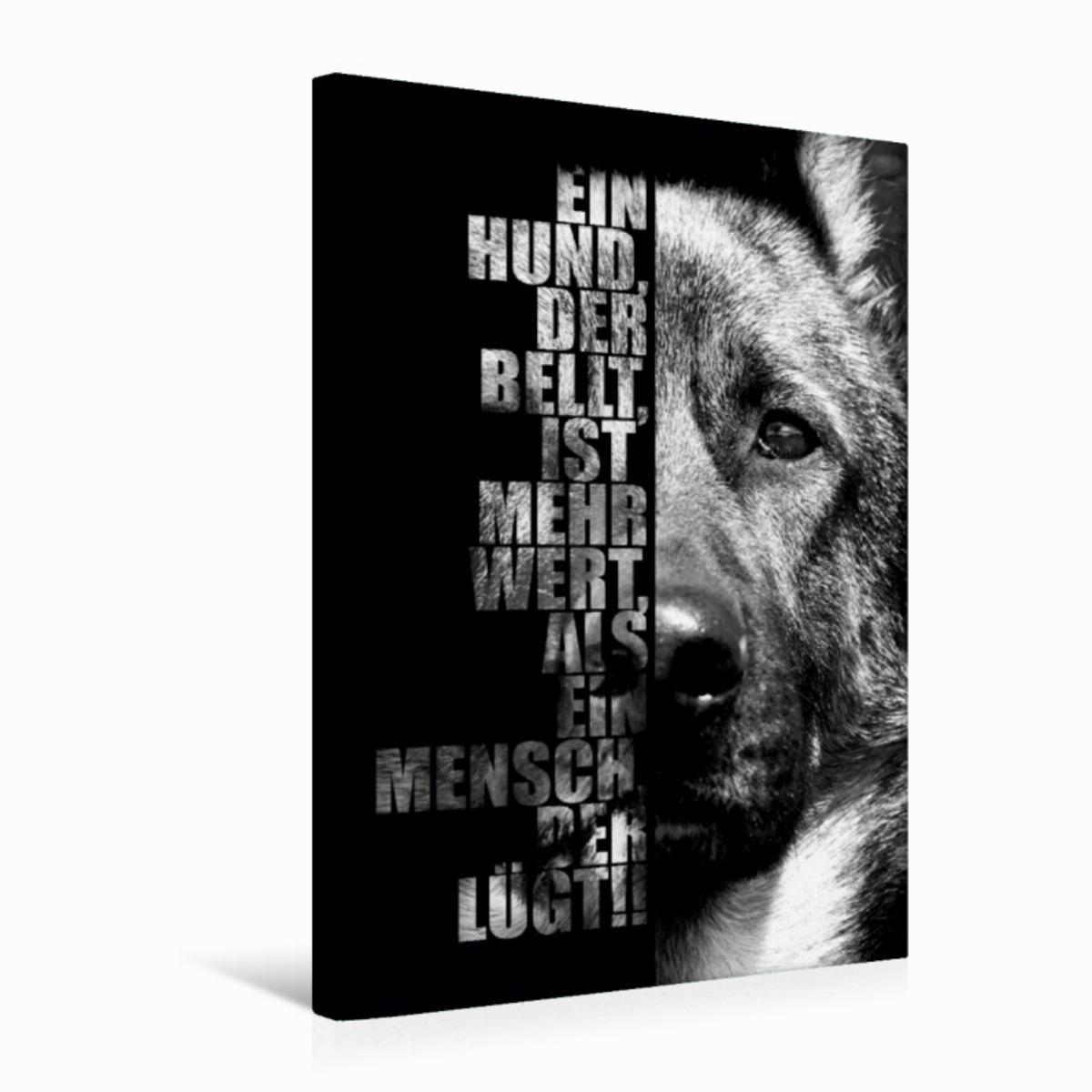 Calvendo Leinwand Deutscher Schäferhund 50x75cm, Special-Edition Wandbild, Bild auf Keilrahmen, Fertigbild auf hochwertigem Textil, Leinwanddruck, kein Poster