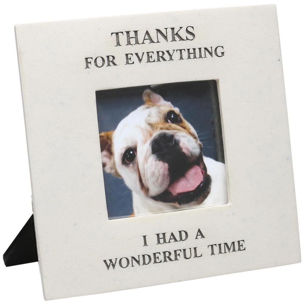 Amazon thanks for everything i had a wonderful time in amazon thanks for everything i had a wonderful time in memory of pet picture frame by house parts single frames jeuxipadfo Images