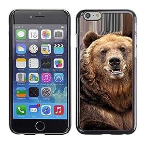 TECHCASE**Cubierta de la caja de protección la piel dura para el ** Apple iPhone 6 ** Bear Cute Furry Animal Nature Beast