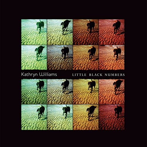 Album Art for Little Black Numbers by Kathryn Williams