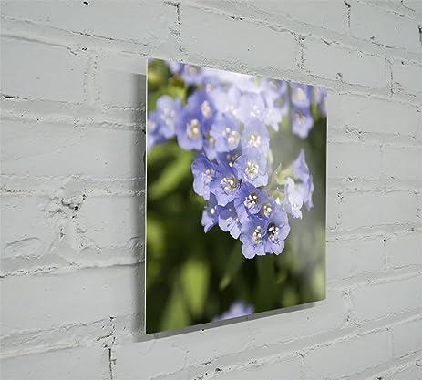amazon com metal prints metal wall art dye sublimated aluminum