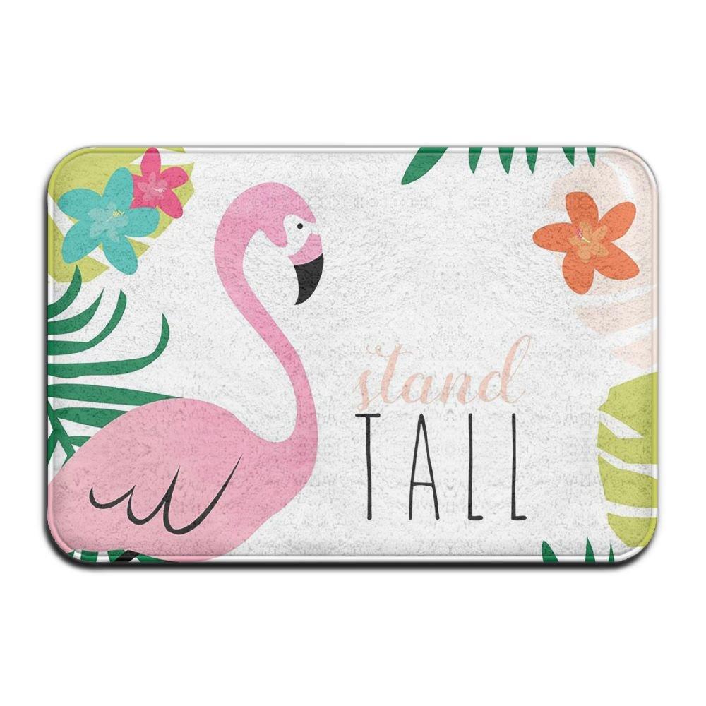 BINGO BAG Stand Tall Flamingo Indoor Outdoor Entrance Printed Rug Floor Mats Shoe Scraper Doormat For Bathroom, Kitchen, Balcony, Etc 16 X 24 Inch by BINGO BAG