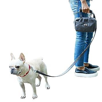 Delifur® - Dispensador de bolsas de basura para perro, con bolsa de transporte funcional