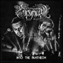 Empyrium - Into the Panth....<br>