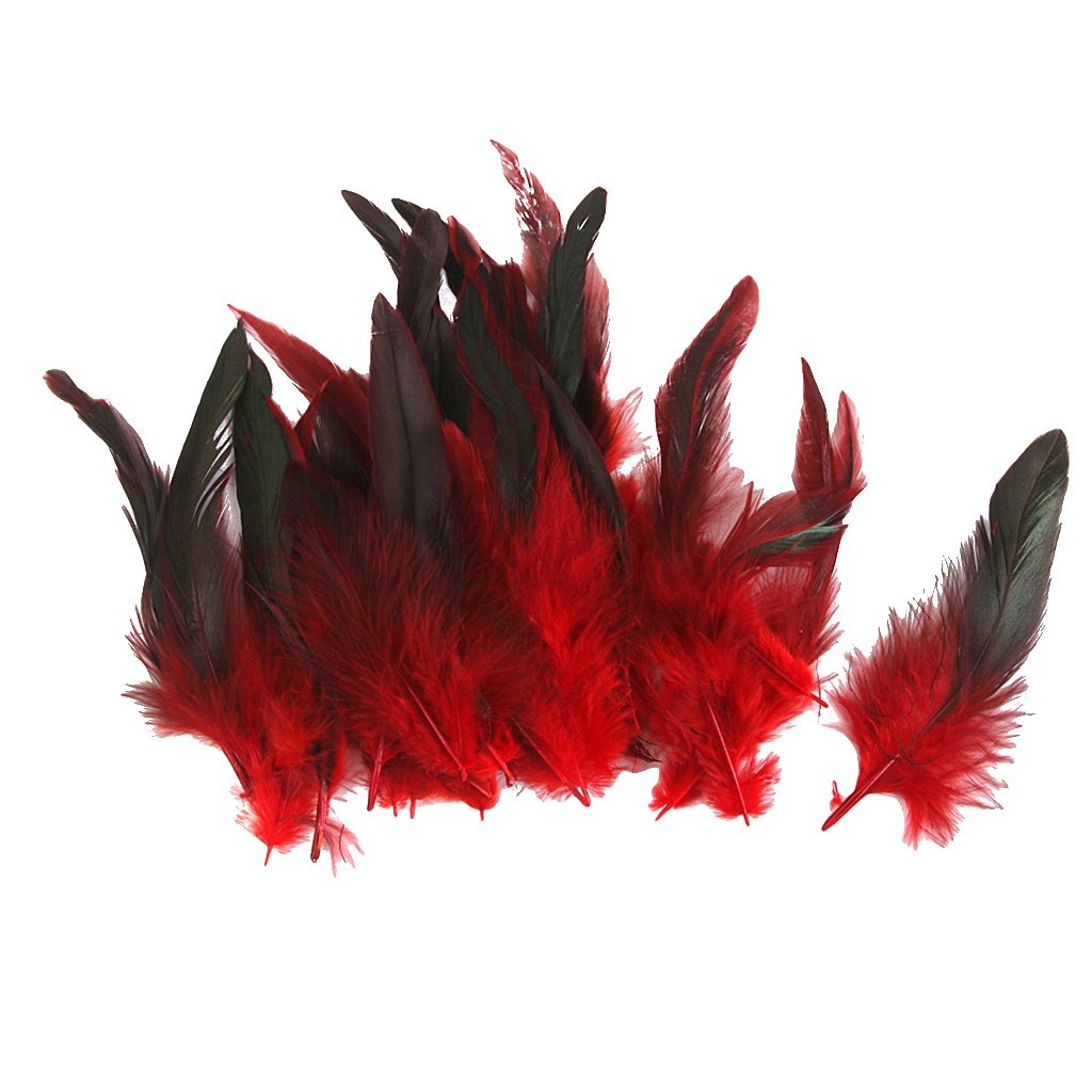 Wholesale 50 beautiful feathers 12-18cm / 4-7inch Red Generic AEQW-WER-AW130361