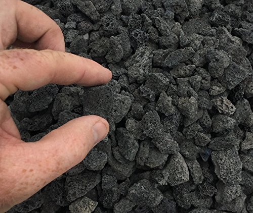 Black Lava Rock ,Average Size Stones 1/2