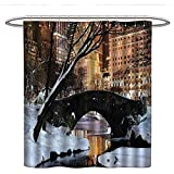 Anshesix NYC Decor Collectioncute Shower curtainNew York City Manhattan Central Park Lake Bridge in Freezing Winter at Dusk PanoramaUnique Shower curtainBrown Black White