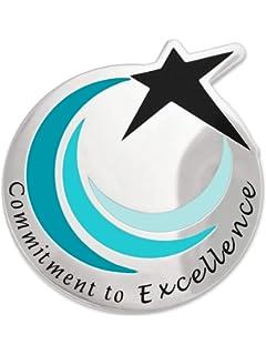 PinMart/'s Shining Star Customer Service Corporate Lapel Pin