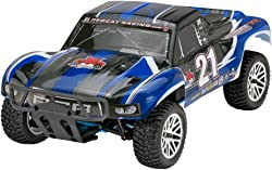 Top 10 Best Nitro RC Cars (2020 Reviews & Buying Guide) 2