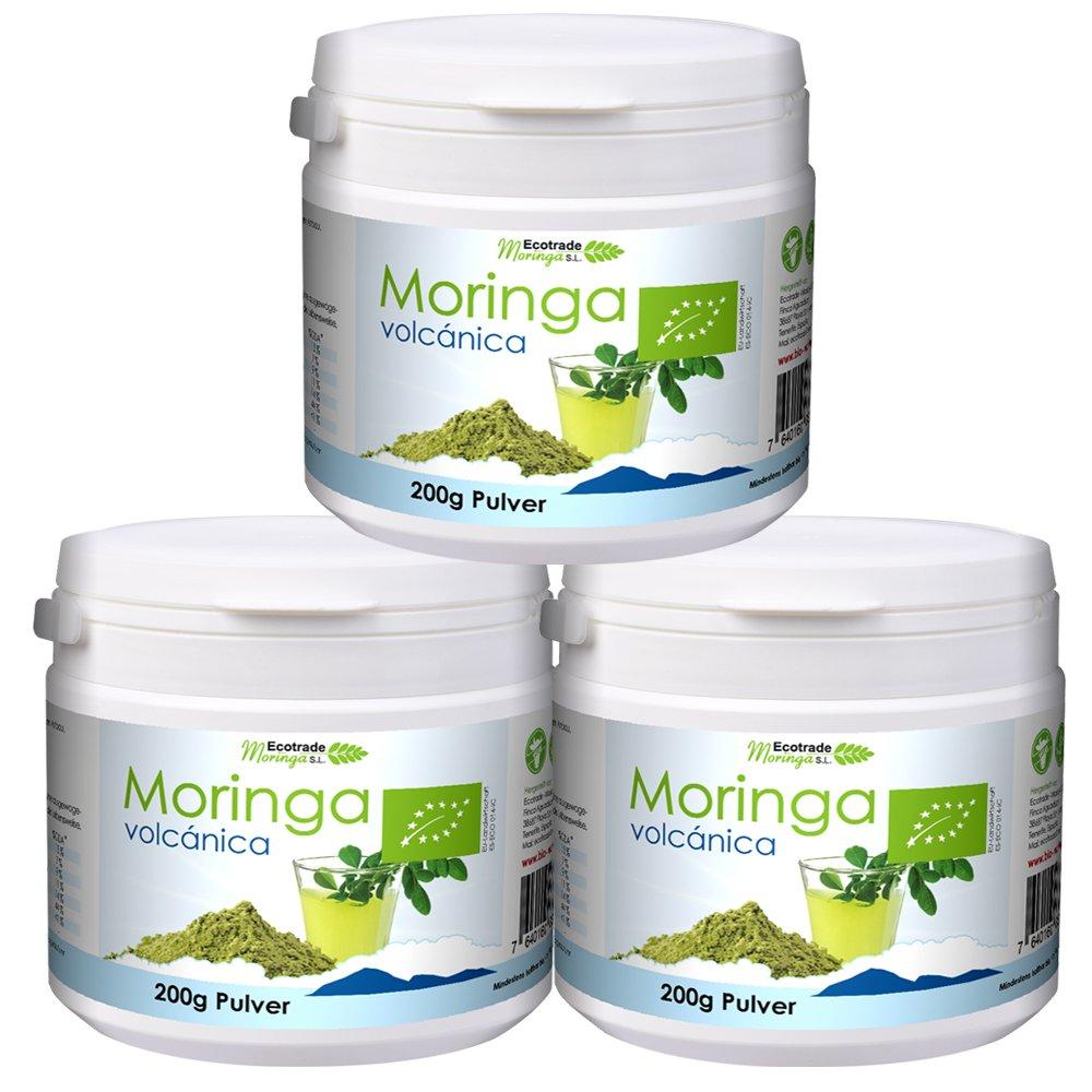 Moringa volcanica Pulver Bio frisch aus Teneriffa - Moringa oleifera vegan Rohkost zu Smoothie, Gewürz, Diät Blätter getrocknet und geschnitten 600 g