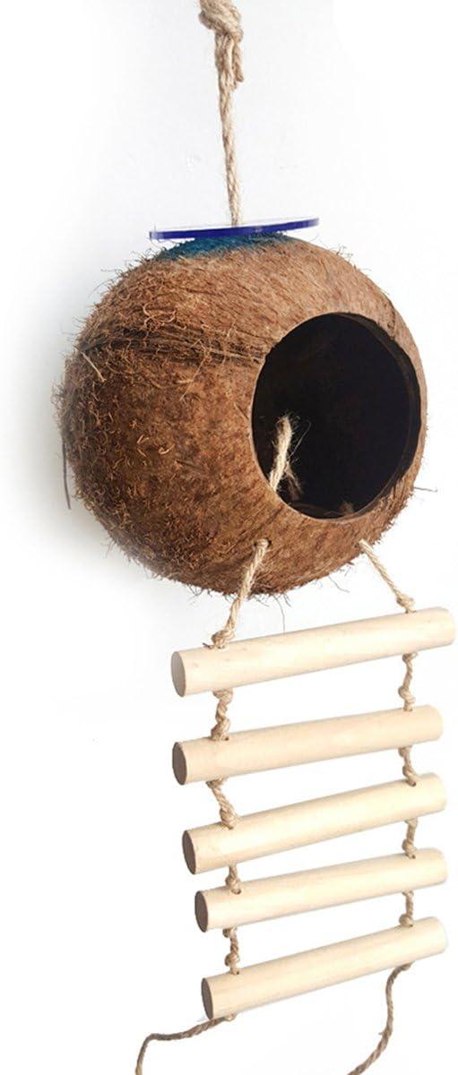 UEETEK Nido de Pájaro Coco Nido de Cáscara Nido Coco Natural Escaparate con Escalera Pájaro Juguete para Periquitos Periquito y Pequeño Animal Doméstico
