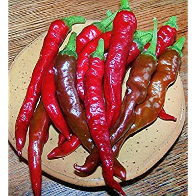 30+ Organically Grown Giant Jimmy Nardello's Pepper Seeds Heirloom Vegetable Seeds for Planting HYS-RR : Garden & Outdoor