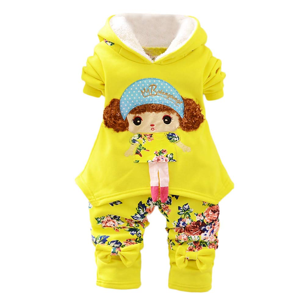 Winter Warm Infant Baby Girls 2pcs Outfit Set for 0-24 Months,Cartoon Girls Embroidery Floral Hooded Pants