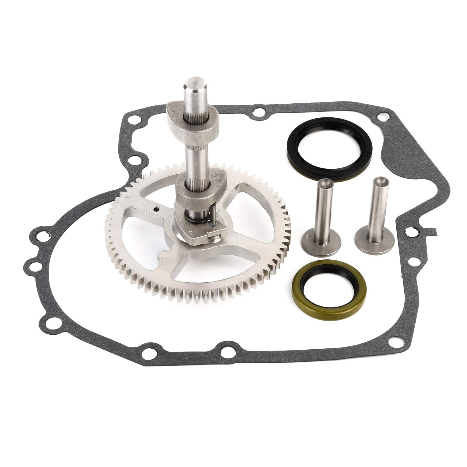 CQYD New Camshaft kit for Briggs & Stratton 793880 Replaces # 793583, 792681, 791942, 795102 Crankcase Gasket Oil Seal