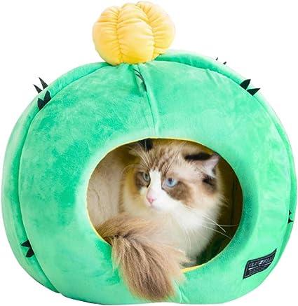 Amazon.com: Cama para gatos Petseek con forma de cactus ...