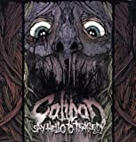 Say Hello to Tragedy-Ltd.Lp [Vinyl LP]