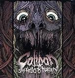 Say Hello to Tragedy [Vinyl]