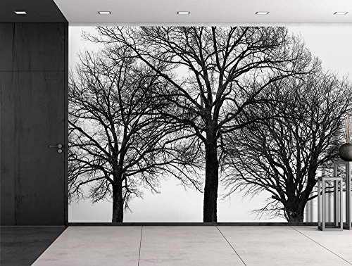 Black Silhouette of Trees with Multiple Branches Wall Mural