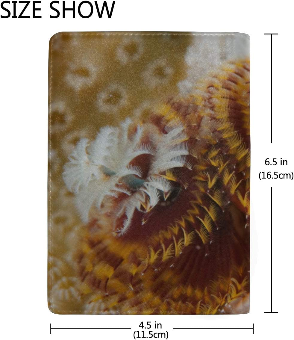 Wild Christmas Tree Worm Cayman Island Reef Blocking Print Passport Holder Cover Case Travel Luggage Passport Wallet Card Holder Made With Leather For Men Women Kids Family