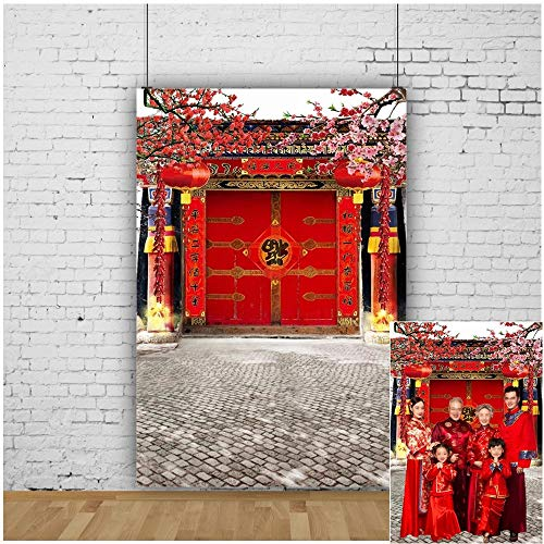 Oriental Lanterns - OFILA Chinese Style Backdrop 5x7ft Spring