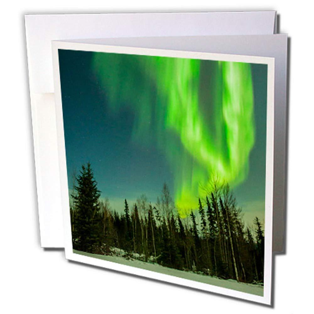 3DROSE GC 229433//_ 2/6/x 15,2/cmAlaska Aurora boreale e foresta Auguri set di 12