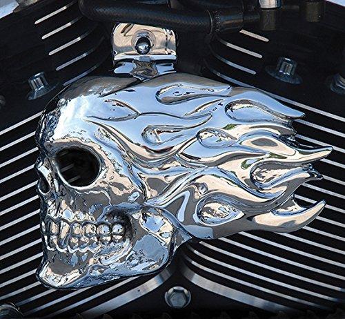 (Chrome Dome Flaming Skull Horn Cover (Aluminium))
