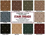 9″x27″ Dog Assist Carpet Stair Treads – POWER POINT – Set of 13 w/ 1 Roll Carpet Tape (Trojan Horse)