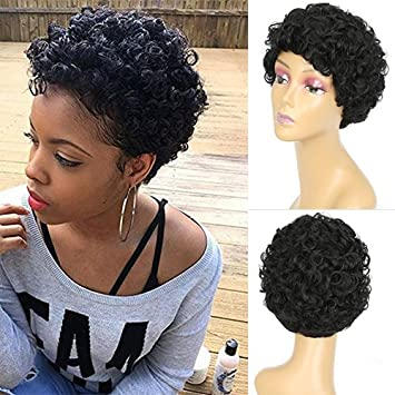 Amazon.com   Blue Bird Short Black Curly Wigs For Women Heat Resistant  Synthetic Wig For African American Ladies Short Wave Hair Cosplay Wigs    Beauty 2f21837cc
