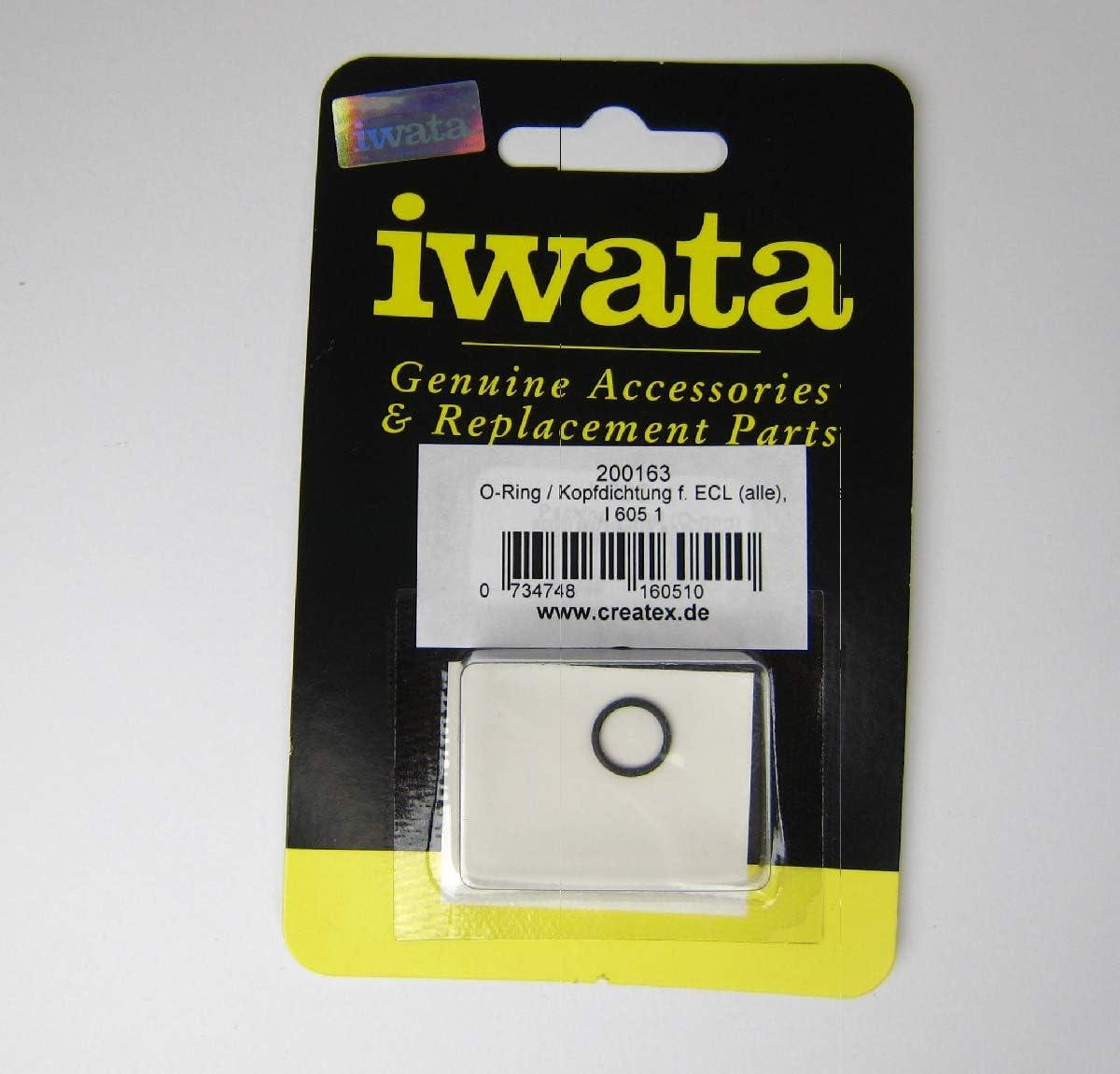Iwata Packing Head O-Ring
