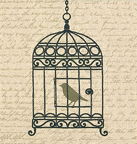 - Dimensions Needlecrafts Stamped Embroidery, Vintage Birdcage