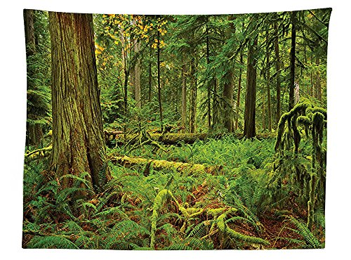 vipsung-farm-house-decor-tablecloth-idyllic-lush-rainforest-in-canadian-island-with-ferns-moss-on-tr