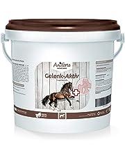 Garra del Diablo para Caballos en Polvo 1kg. | Antiinflamatorio Natural para Caballos | Hargapofito