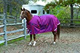 Shires, Equestrian Stormcheeta Heavy Weight Turnout, Red 72