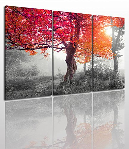 Landscape Tree Canvas Wall Art Painting Modern Design Picture For Home Office Decor 3 Pieces Black White And Red Big Maple Framed On Wooden Frame Image Pictures Photo Artwork Decoration Ready To Hang