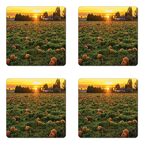 Ambesonne Autumn Pumpkin Coaster Set of Four, Agriculture Themed Photo of Fall Seasonal Fruit Patch at Sunset Time, Square Hardboard Gloss Coasters for Drinks, Multicolor