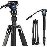 SIRUI 2-in-1 Traveler Series Carbon Fiber Video Tripod with AM5V Fluid Head for Cameras, Monopod Conversion, 30.9lbs Load Cap