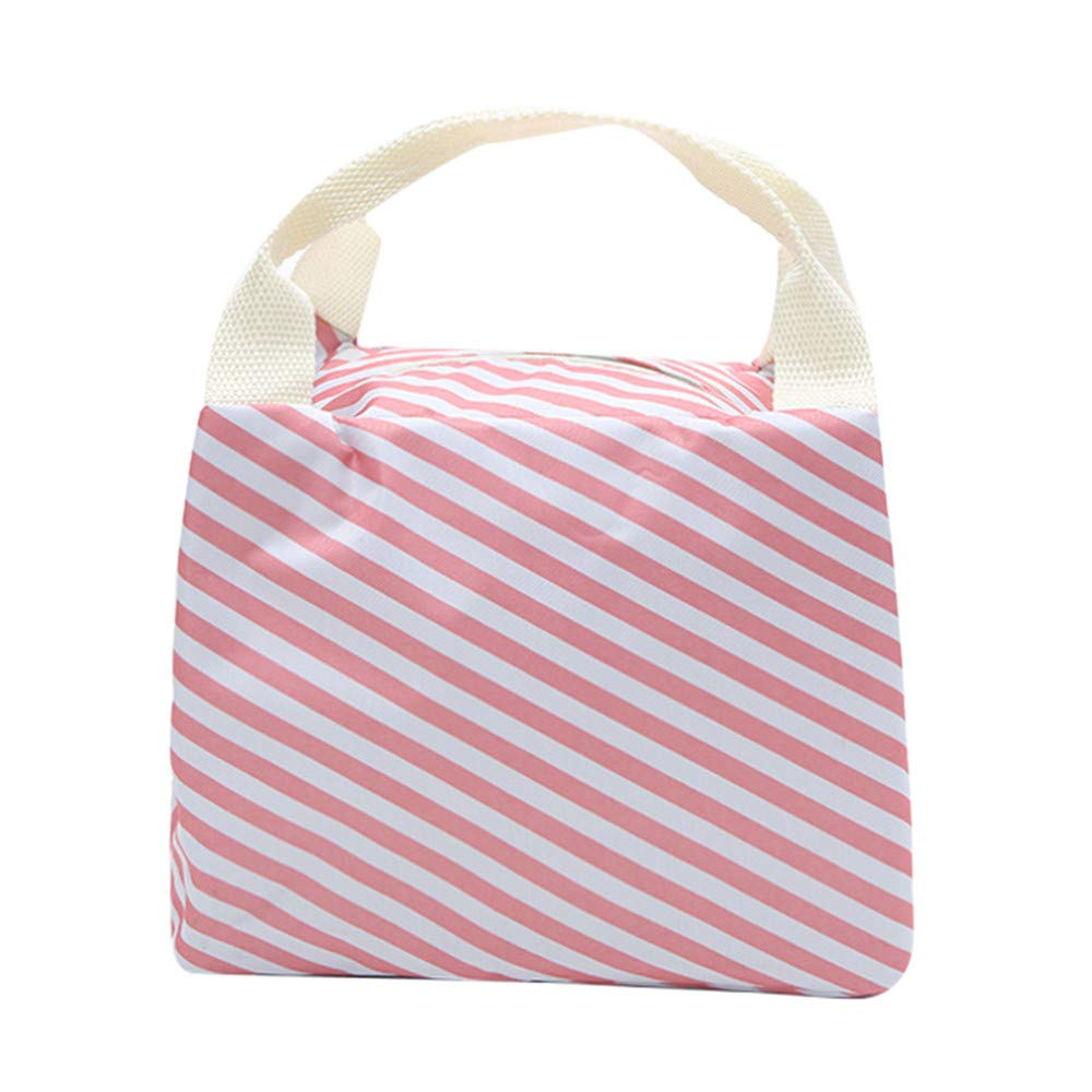 Pet1997 Insulated Cold Canvas Picnic Carry Case, Thermal Portable Lunch Bag For Women Kids (D)