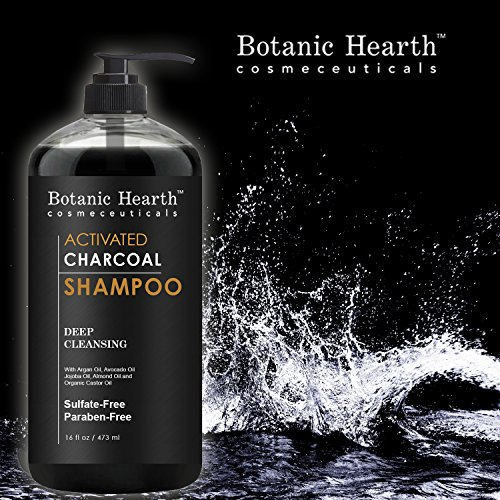 Botanic Hearth Activated Charcoal Shampoo Sulfate Free  Daily Clarifying and Cleansing Hair Shampoo for Men and Women