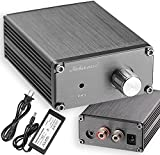 Nobsound 100W Full Frequency Mono Channel Digital Power Amplifier Audio Mini Amp Home Speaker with Power Supply (Gray)