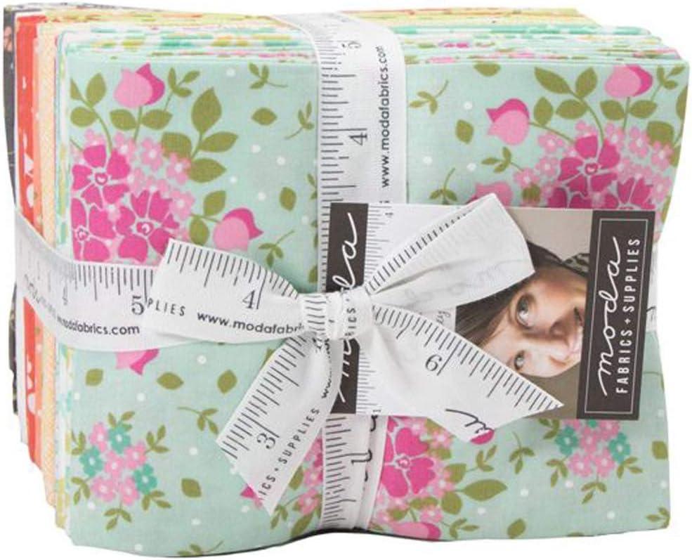 Canning Day AB Bundle by Corey Yoder; 38 18-inch by 22-inch Precut Fabric Fat Quarters