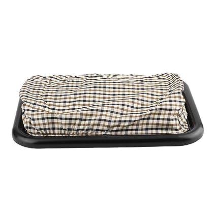 Awe Inspiring Amazon Com Kybers Portable Desk Lap Desk Laptop Tray With Bralicious Painted Fabric Chair Ideas Braliciousco