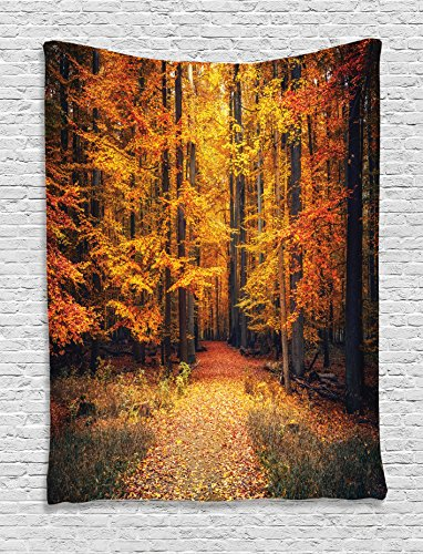 Ambesonne Farm House Decor Tapestry, Magical Fall Photo in National Park With Vivid Leaf Plant Eco Earth Mystical Theme, Bedroom Living Room Dorm Decor, 40 W x 60 L Inches, Orange Brown Fall Leaves Photo