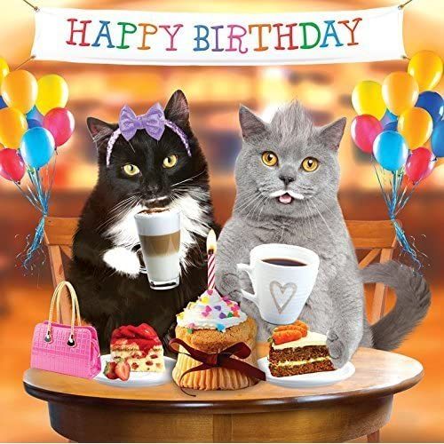Cat Birthday Card Amazon