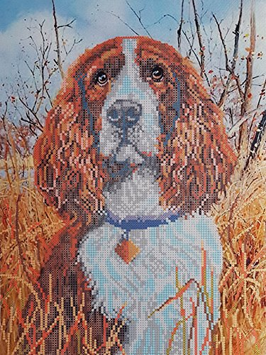 Spaniel Bead Embroidery kit, Pet Lover Gift idea, Dog Needlepoint Pattern, Beaded Cross Stich kit, Animal DIY Wall Art, Dog Handcraft kit (Spaniel Needlepoint)