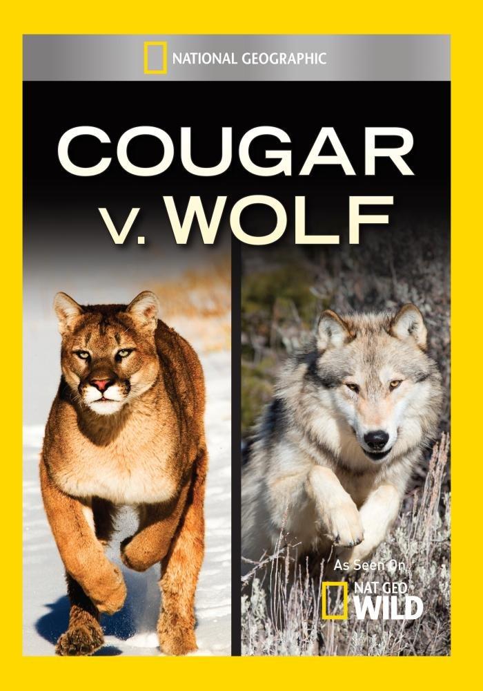 rozsądna cena taniej buty temperamentu Amazon.com: Cougar V. Wolf: Artist Not Provided: Movies & TV