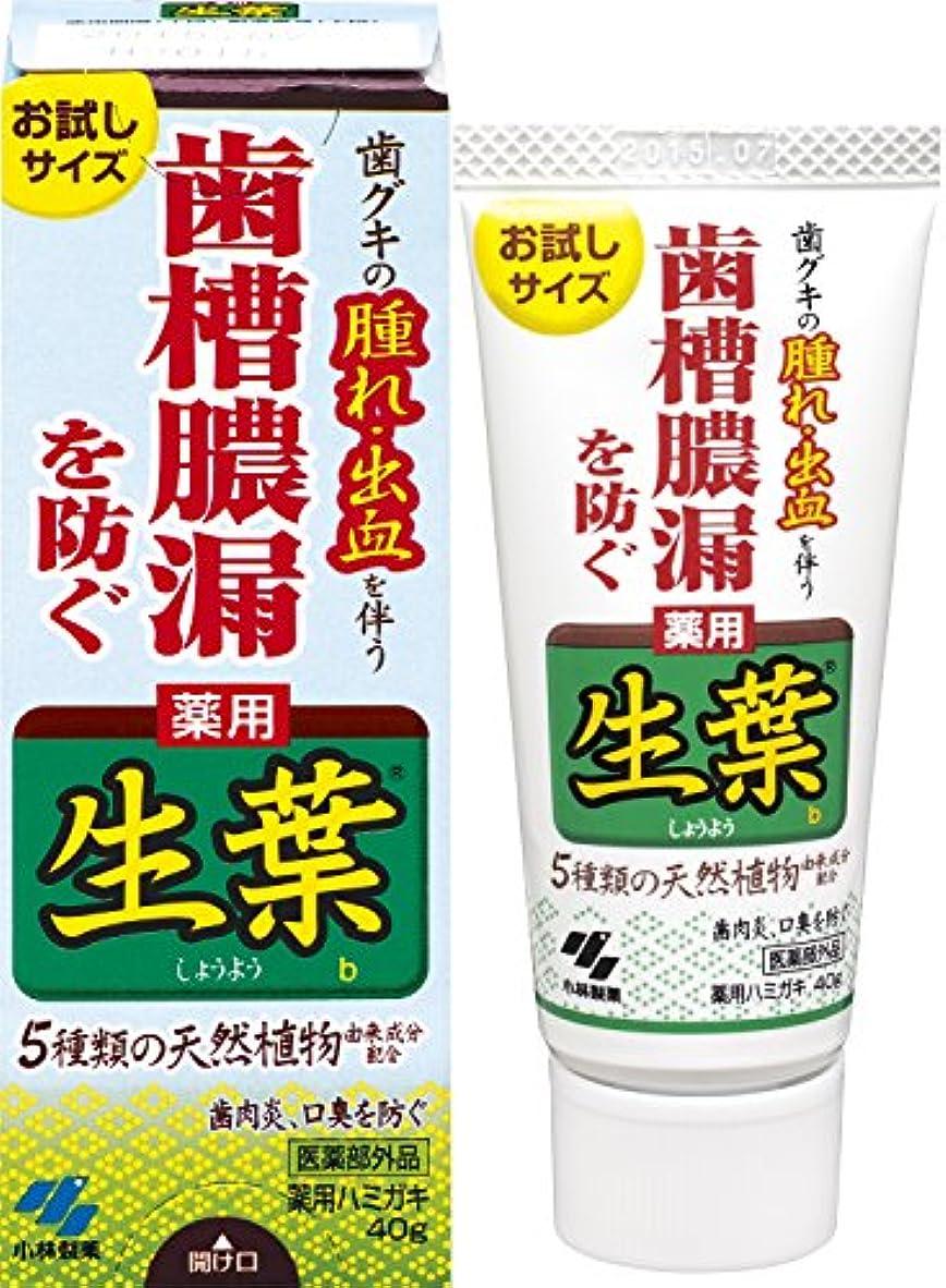 先生病院毛細血管生葉(しょうよう)お試しサイズ 歯槽膿漏を防ぐ 薬用ハミガキ ハーブミント味 40g 【医薬部外品】