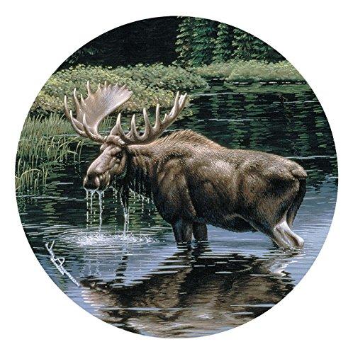 Thirstystone Stoneware Coaster Set, Moose in Stream