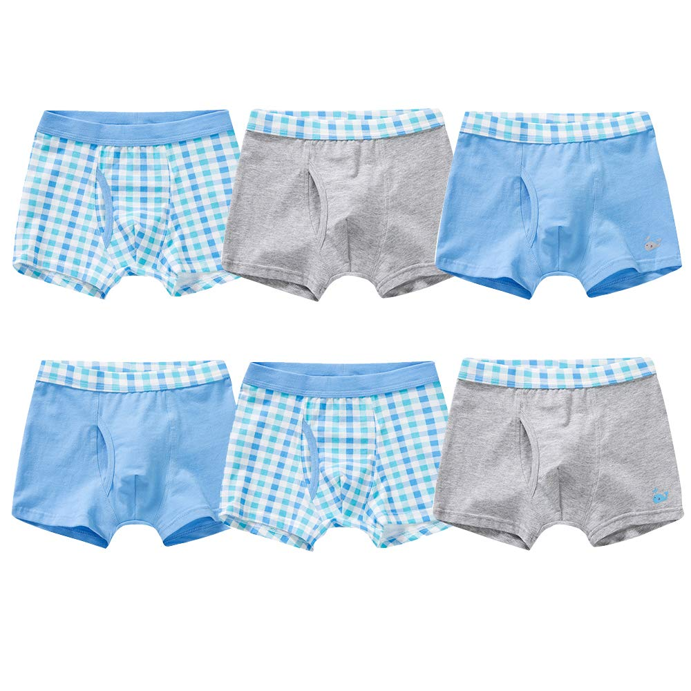 Orinery Plaid Boys Boxer Briefs Cotton Teenager Underwear 6 Pack N013TW