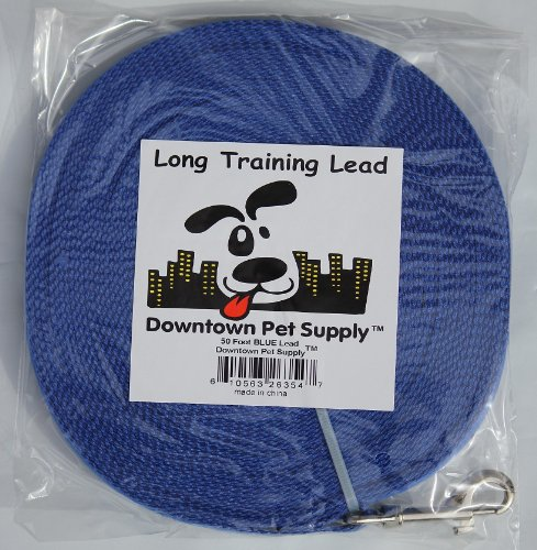 Long Dog Puppy Obedience Recall Training Agility Lead, Leash GREEN, BLACK, RED, BLUE, or ORANGE – by, Pet Supply City, LLC, My Pet Supplies