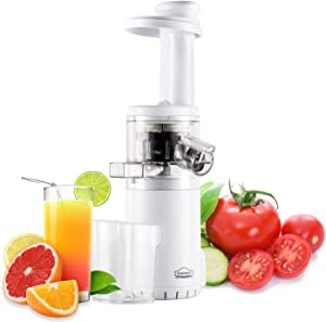 DEWINNER Slow Masticating Mini Juicer Extractor Easy to Clean, Cold Press Juicer Machine with quiet motor for High Nutrient Fruit & Vegetable Juice (Brush Included)